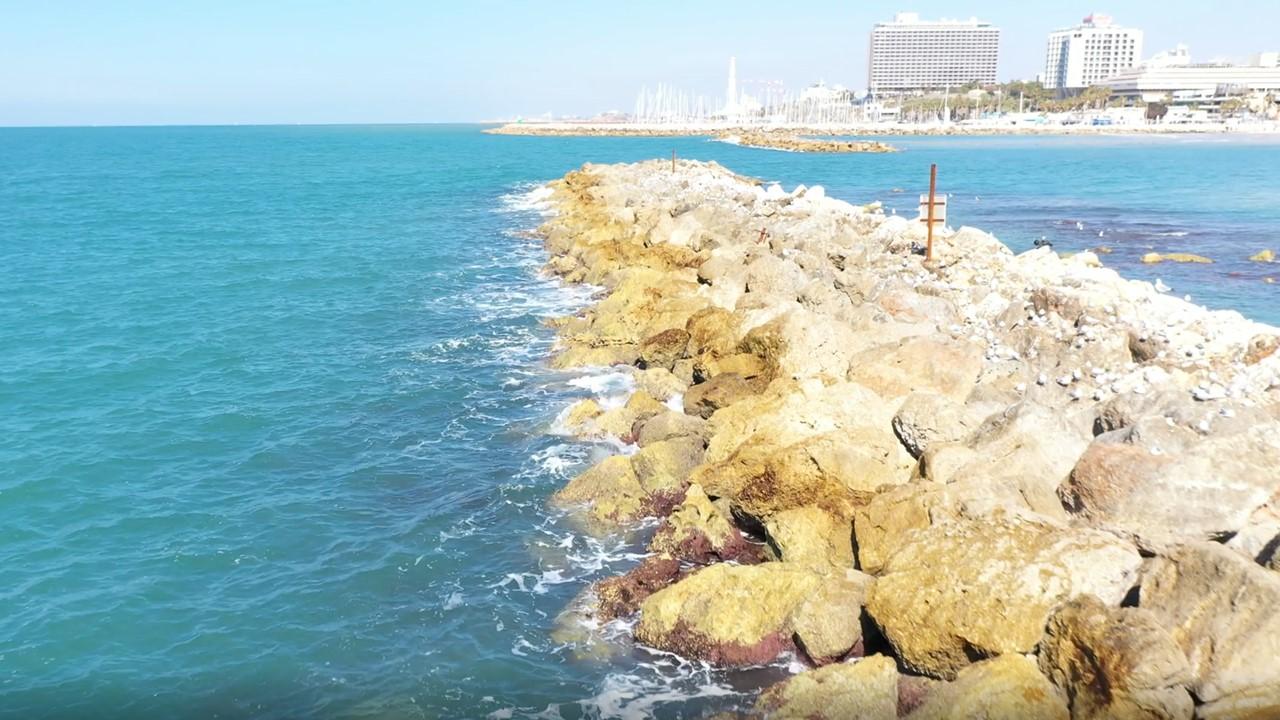 זיהום נפט בחופים